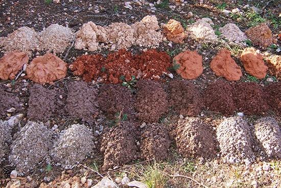 Vue de cuttings de forages, formation du Maastrichtien dans la région de Creissan (34)